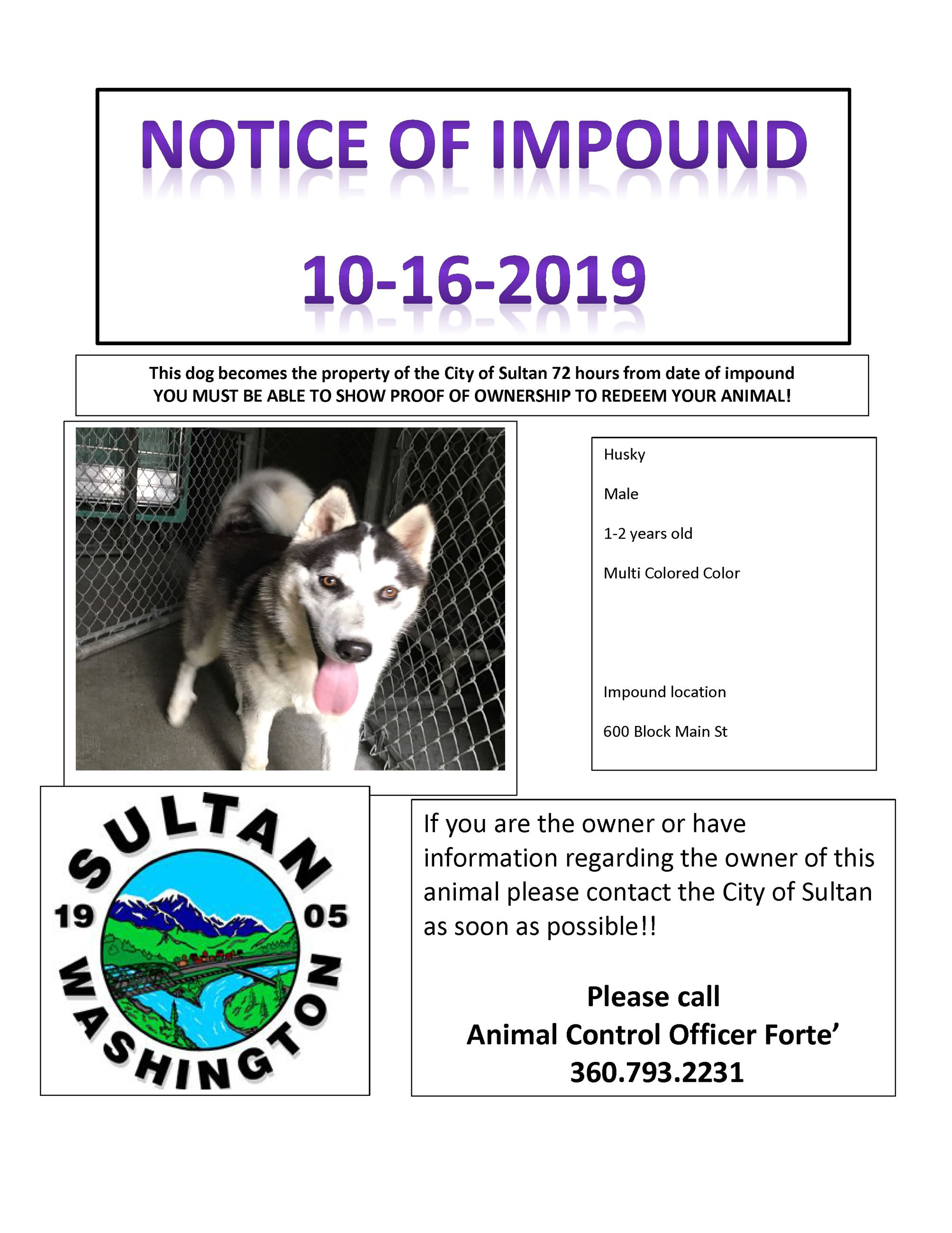 impound poster 10.16.2019