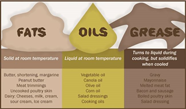 Graphic Showing Examples of Fats, Oils, and Greases