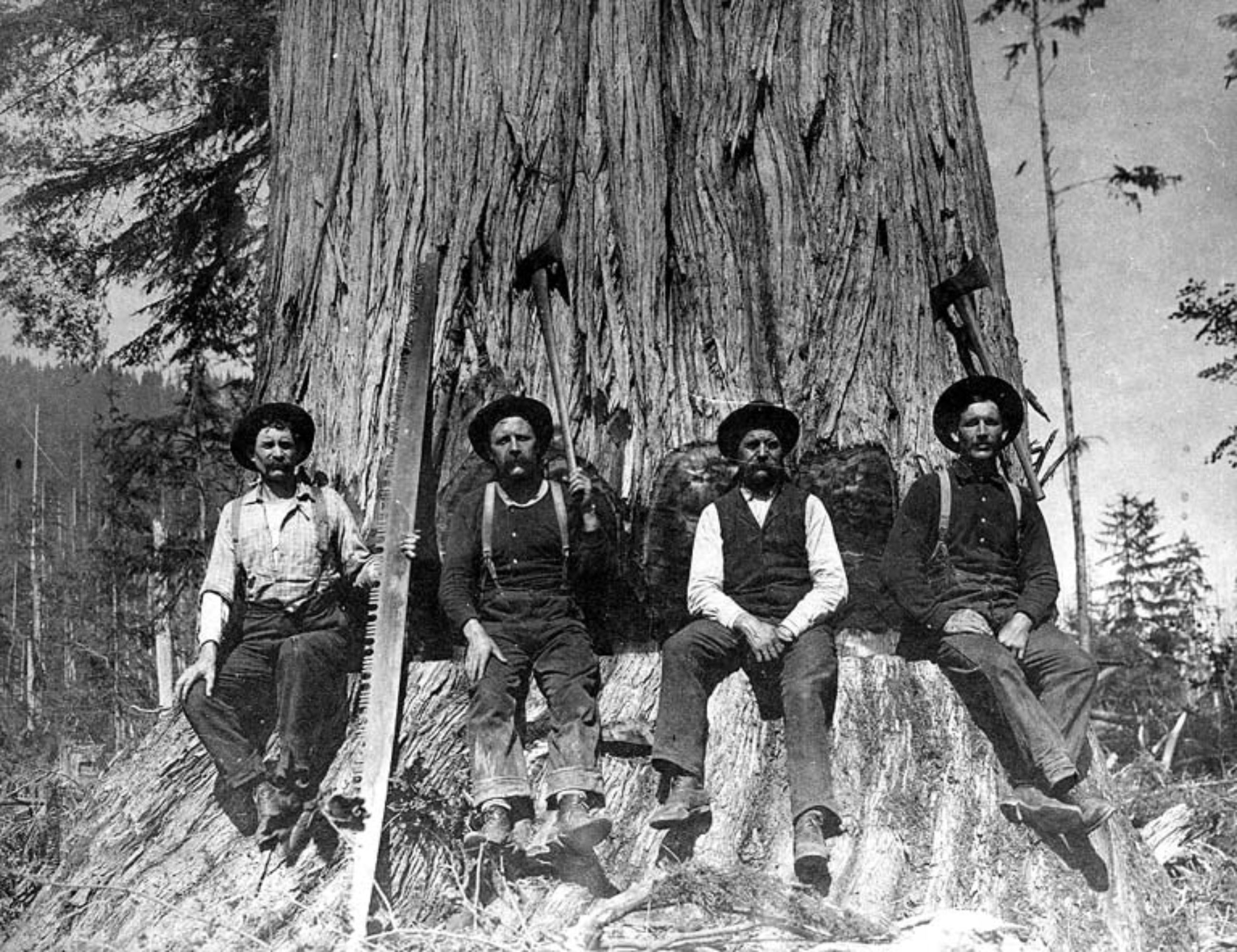 Historical Photo of Four Loggers