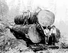 Historical Photo of Sultan Miller Company Loggers in 1930